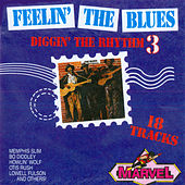 Feelin' the Blues - Diggin' the Rhythm 3 von Various Artists
