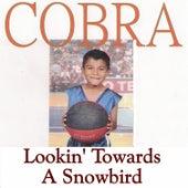 Lookin' Towards a Snowbird by Cobra