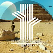 Dry by Reatch