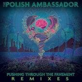 Pushing Through the Pavement (Remixes) by The Polish Ambassador