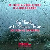 La Tarde se ha Puesto Triste (Pacha Remixes) von Dr Kucho!