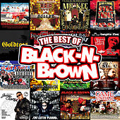 Best Of Black N Brown Vol. 1 von Various Artists