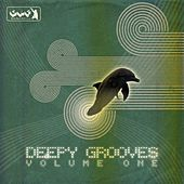 Deepy Grooves Vol. 1 by Various Artists