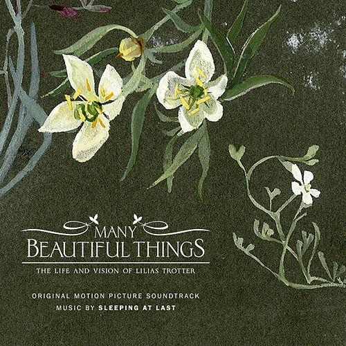 Many Beautiful Things (Original Motion Picture Soundtrack) de Sleeping At Last