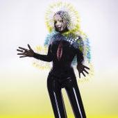 Vulnicura de Björk
