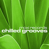 Chilled Grooves, Vol. 4 von Various Artists