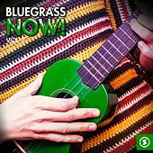 Bluegrass Now!, Vol. 2 by Various Artists