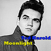 Moonlight by Ted Herold