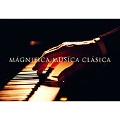 Magnifica Música Clásica by Various Artists