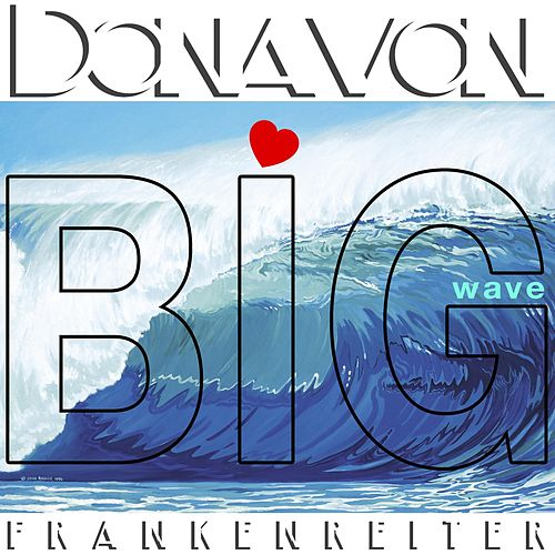 Big Wave by Donavon Frankenreiter