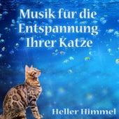 Musik für die Entspannung Ihrer Katze von Heller Himmel