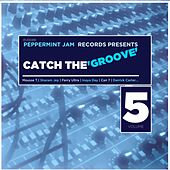Peppermint Jam Records Pres., Catch the Groove, Vol. 5 von Various Artists
