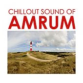 Chillout Sound of Amrum de Various Artists