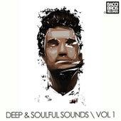 Deep & Soulful Sounds - Vol. 1 von Various Artists