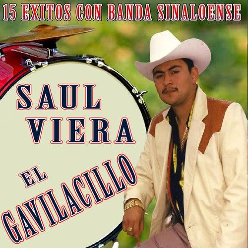 15 Exitos Con Banda Sinaloense by Saul Viera el Gavilancillo