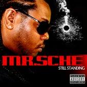 Still Standing by Mr. Sche