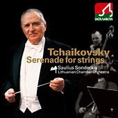 Tchaikovsky: Serenade for String Orchestra, Andante Cantabile by Lithuanian Chamber Orchestra