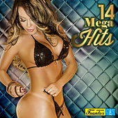 14 Mega Hits, Vol. 3 de Various Artists