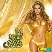 14 Mega Hits, Vol. 4 de Various Artists