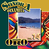 Colección Oro la Sonora Dinamita, Vol. 14 de Various Artists