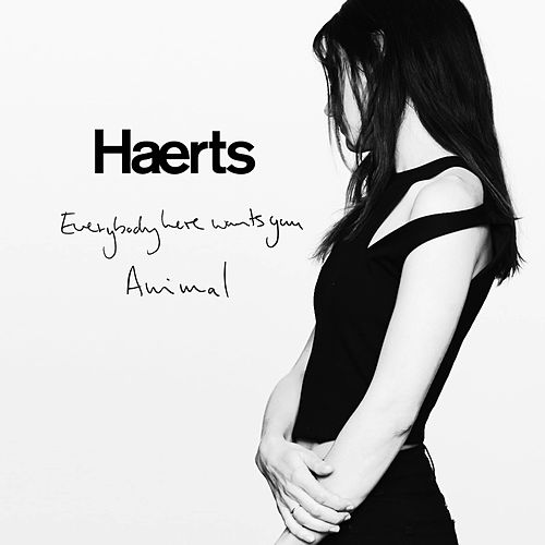 Everybody Here Wants You by Haerts