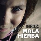Mala Hierba von Debruces