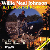 The Country Boy Goes Home, Vol. 2 de Willie Neal Johnson