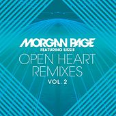 Open Heart Remixes, Vol. 2 de Morgan Page