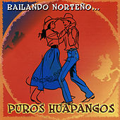 Bailando Norteno... Puros Huapangos by Various Artists