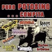 Puro Potosino... Compita by Various Artists