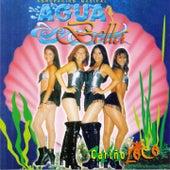 Cariño Loco de Aguabella