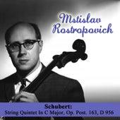 Schubert: String Quintet In C Major, Op. Post. 163, D 956 de Mstislav Rostropovich
