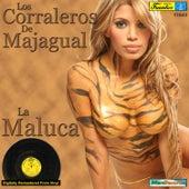 La Maluca by Los Corraleros De Majagual