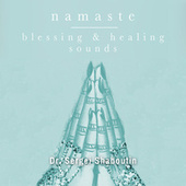 Namaste: Blessing and Healing Sounds by Dr. Sergei Shaboutin