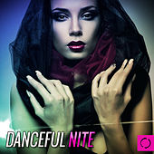 Danceful Nite by Various Artists