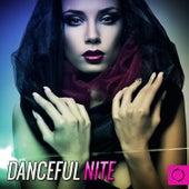 Danceful Nite by Various Artists