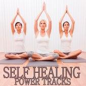 Self Healing Power Tracks von Various Artists