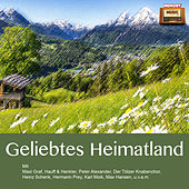 Geliebtes Heimatland by Various Artists