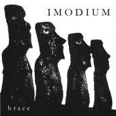 Brace by Imodium