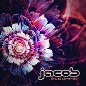 Blooming de Jacob