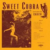 Earth by Sweet Cobra
