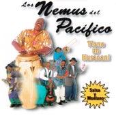 Tiene un Huracán! by Los Nemus Del Pacifico