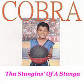 Tha Stangins' of a Stanga by Cobra