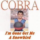 I'm Gone Get Me a Snowbird by Cobra