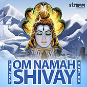 The Great Om Namah Shivay Mantra by Various Artists