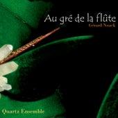 Au gré du la flûte de Various Artists