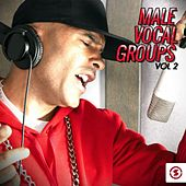 Male Vocal Groups, Vol. 2 by Various Artists