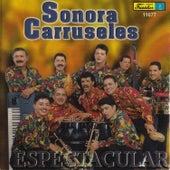 Espectacular de La Sonora Carruseles