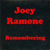 Remembering by The Ramones