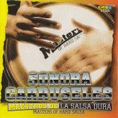 Maestros de la Salsa Dura de La Sonora Carruseles
